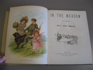 In the Meadow: Fun and Frolic