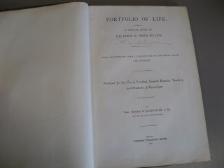Portfolio of life;: Or, a popular study of the house in which we live ... designed for the use of families, general readers, teachers and students of physiology